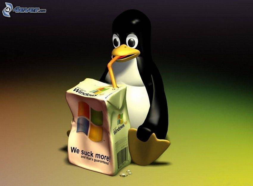 Linux, Windows, dryck, sugrör