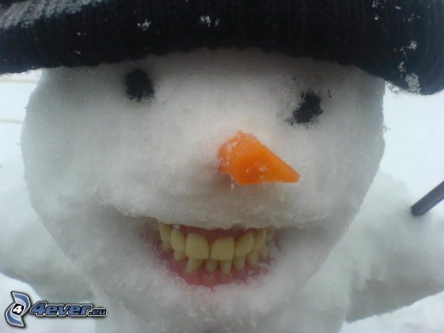snögubbe, protes, morötter, hatt