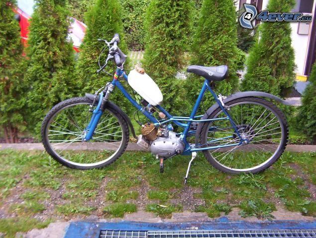 cykel, motor, trädgård
