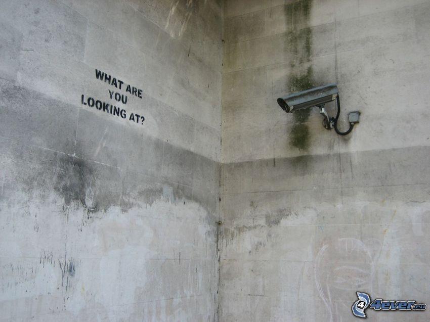 kamera, vägg, övervakning, video