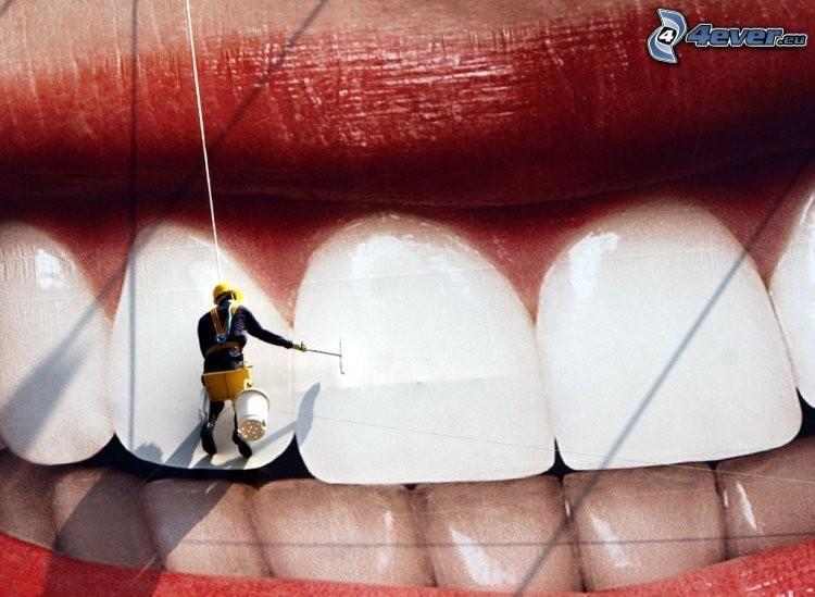 vita tänder, arbetare