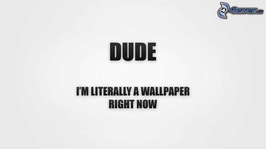 wallpaper, text