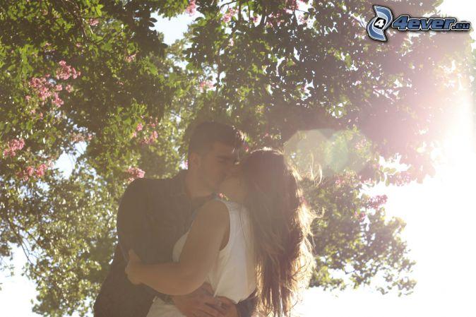 pareja, beso, la floración de árboles, rayos de sol