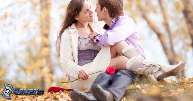 pareja, beso, rosa roja