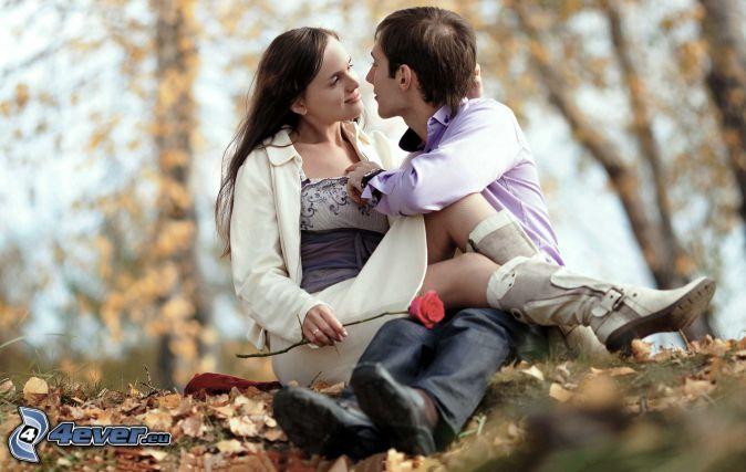pareja, rosa, hojas de otoño