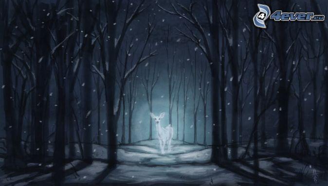 corza, bosque de noche, nieve