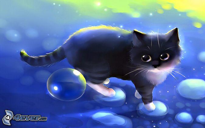 gato negro, burbujas