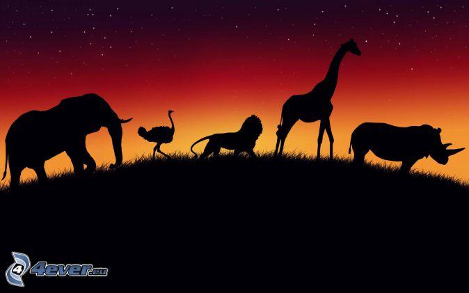 siluetas de los elefantes, la silueta de la jirafa, rinoceronte, león, emú, cielo rojo