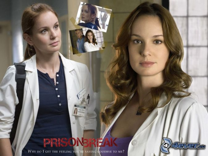 Sara Tancredi, Prison Break