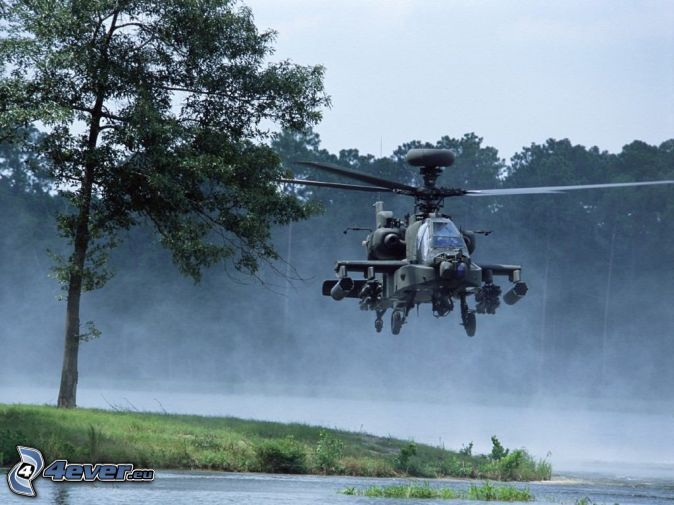 AH-64 Apache, bosque, camino