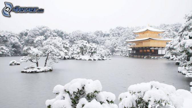 Pagoda Frozen Chinese Food