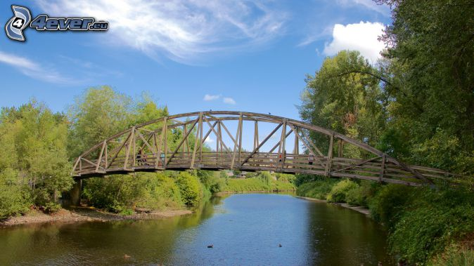 Bothell Bridge, puente de madera, río, bosque