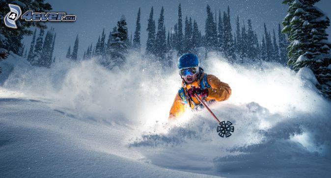 esquí, esquiador, la nevada