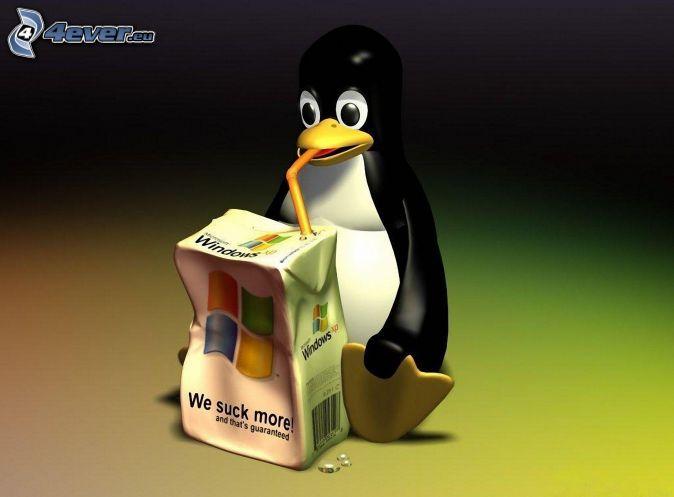 Linux, Windows, bebida, paja