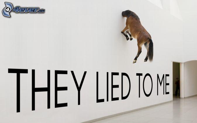 caballo marrón, pared, text