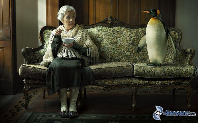abuela, pingüino, silla
