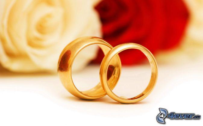 anillos, Rosa Blanca, rosa roja