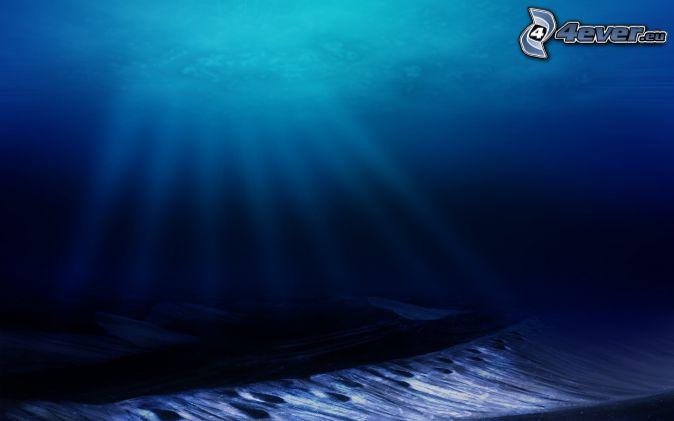 Fondo del mar for Fondo del sol