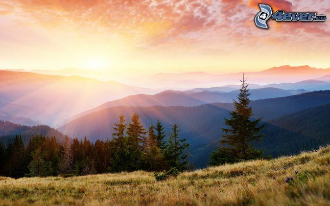 puesta de sol sobre las montañas, montañas, rayos de sol, bosques de