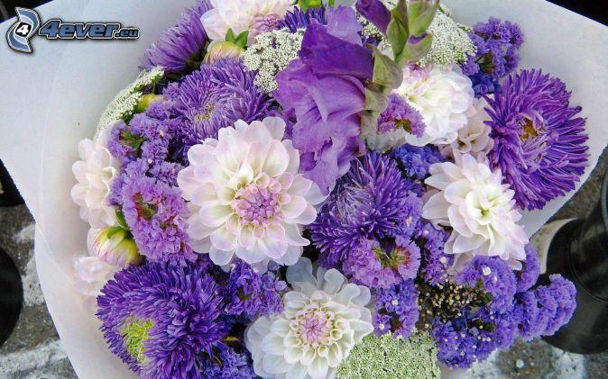 ¿Qué Hay De Mí? Capítulo 54 Ramo,-flores-de-color-azul,-flores-blancas-187518