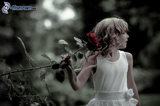 ESOS LOCOS BAJITOS .... Chica,-rosa-roja-203350