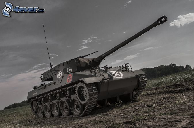 M18 Hellcat, tanque, prado