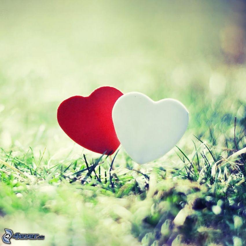corazones, hierba