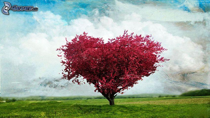 árbol ramificado, corazón, flores de color rosa