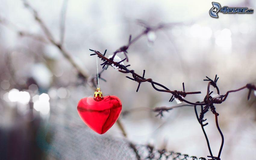 corazón, alambre de la cerca
