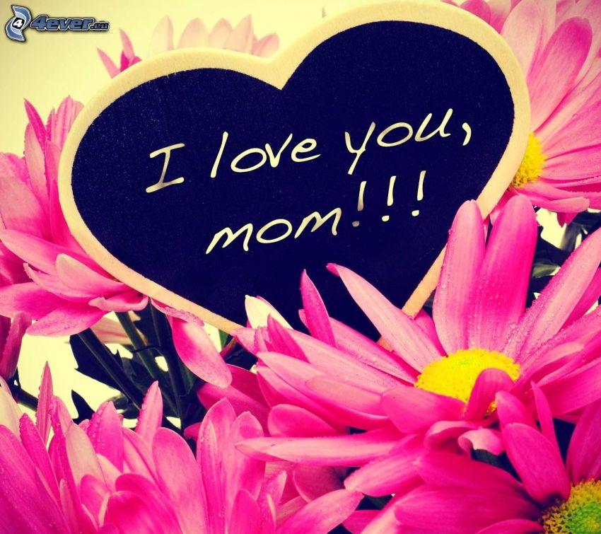 corazón, I love you, flores de color rosa