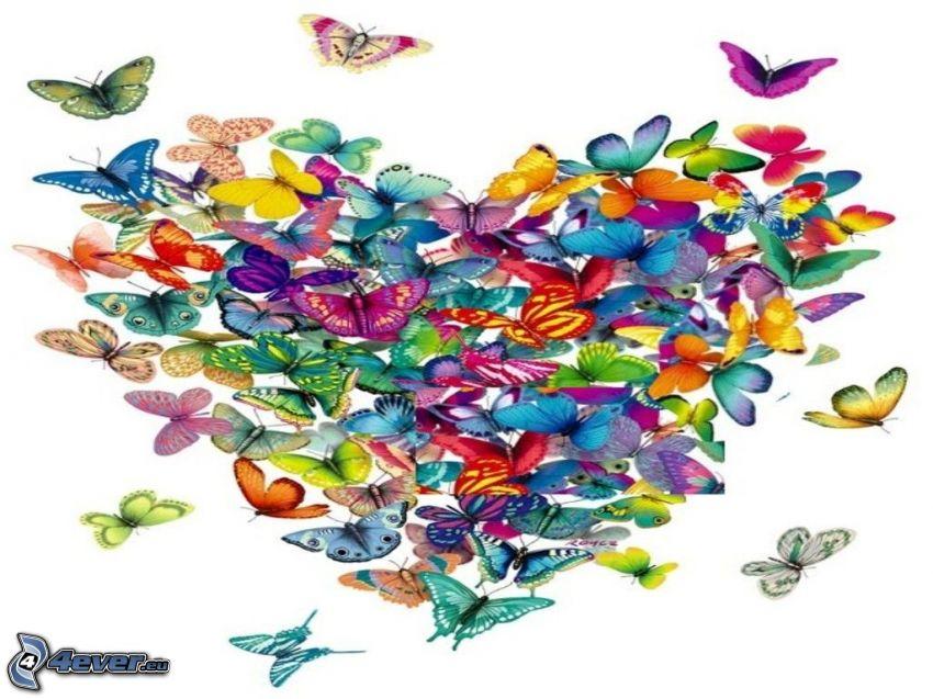 corazón, mariposas de colores