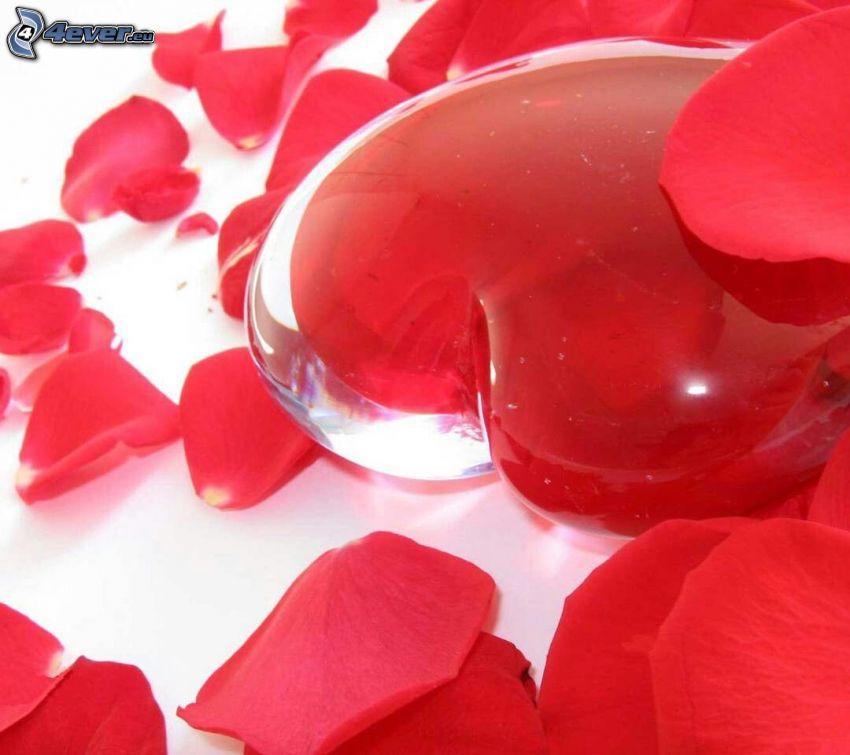 corazón, pétalos de rosa