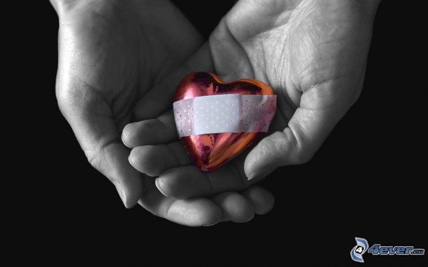 corazón, tirita, manos