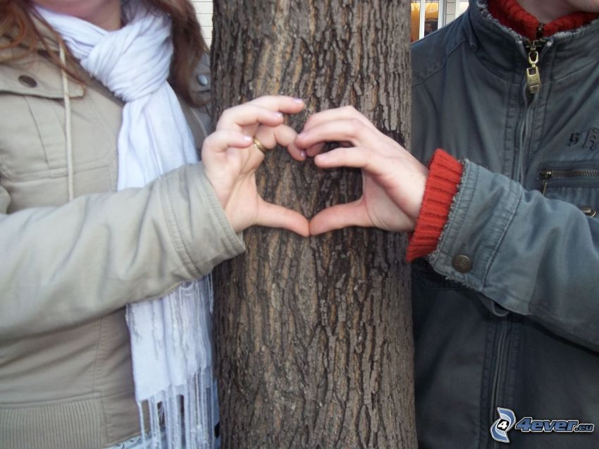 corazón de las manos, pareja al lado de un árbol