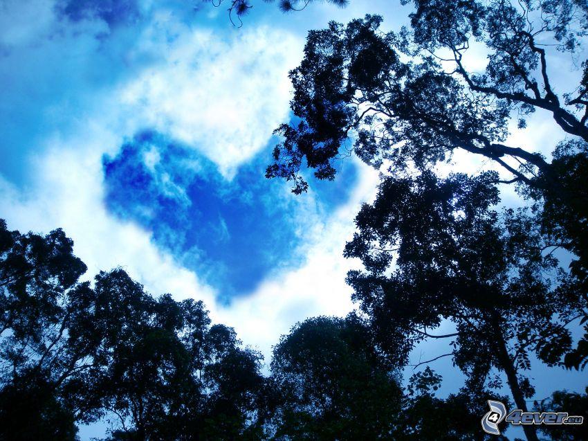 corazón en el cielo, nube, corazón, siluetas de los árboles
