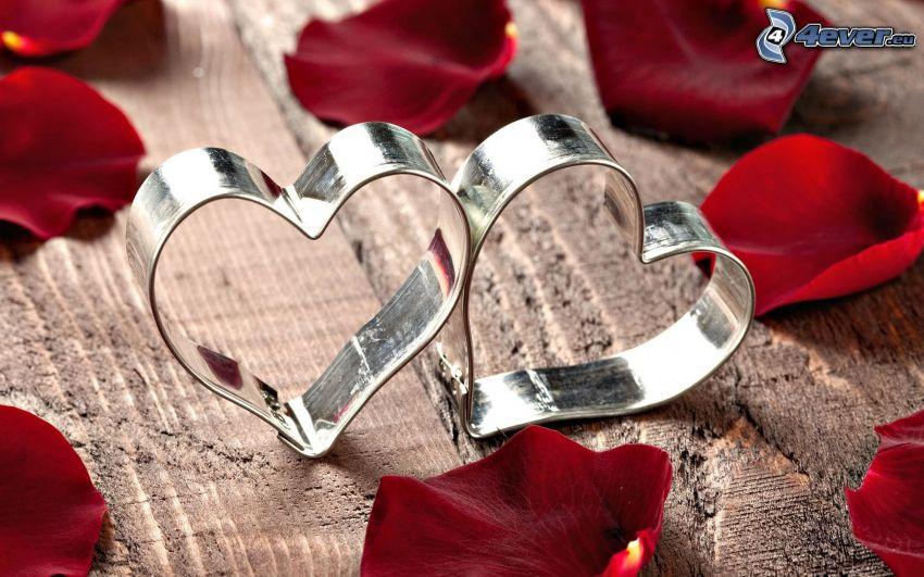 corazones, pétalos de rosa