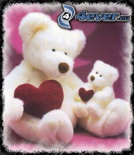 osito con el corazón, oso de peluche