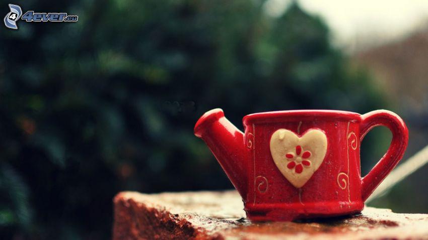 regadera, corazón