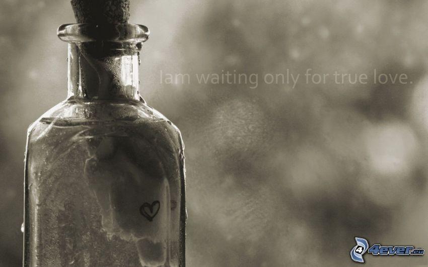 el verdadero amor, botella