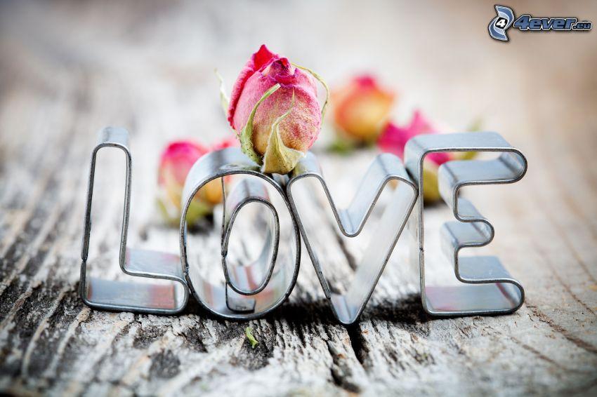 love, amor, rosas