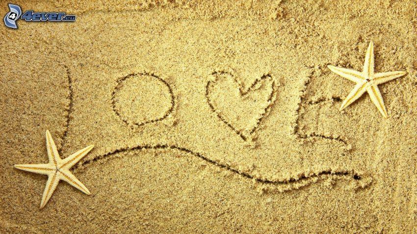 love, arena, estrella de mar