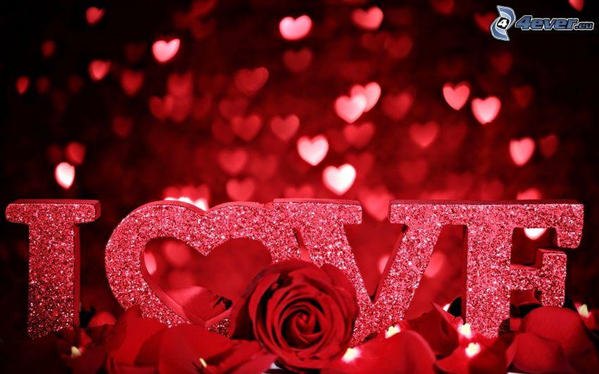 love, corazones, rosa