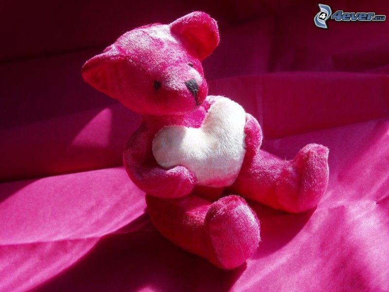osito con el corazón, oso de peluche, color rosa
