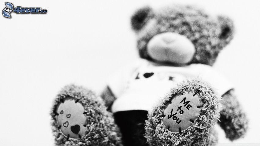 oso de peluche, Me to You