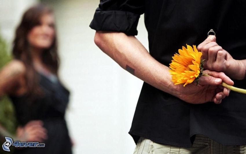 hombre y mujer, flor amarilla, anillo