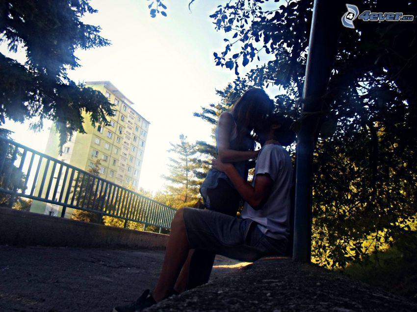 pareja en el parque, beso, árbol, parapeto