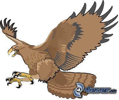 águila, ave de rapiña