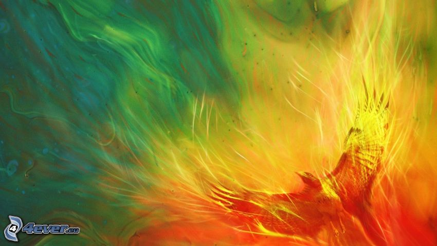 águila, colores