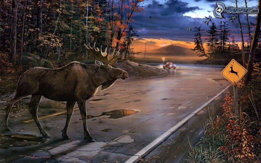 alce, camino, señal de tráfico, coche