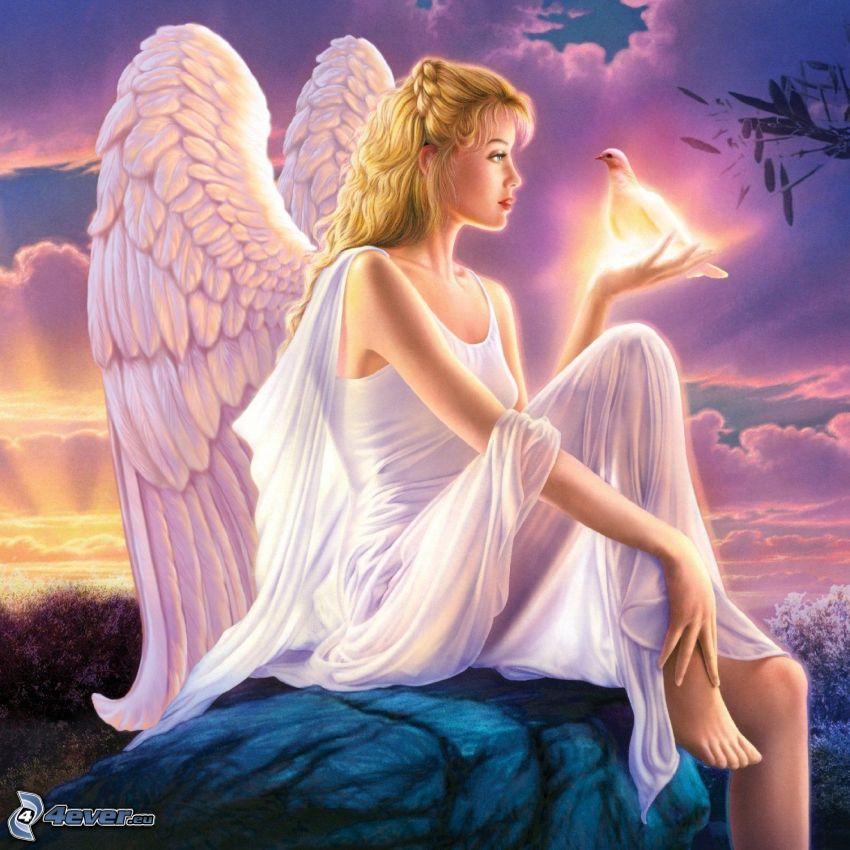 ángel, paloma, vestido blanco, alas